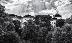 Ludwigsburg Palace (Francis Mansell) Tags: ludwigsburg palace germany tree plant sky monochrome blackwhite niksilverefexpro2 grainy building architecture cloud