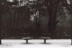 .the silence, the thrilling cold. (Camila Guerreiro) Tags: film bw snow paris pentaxmesuper expiredfilm kodak france camilaguerreiro tmax 100 expired analog