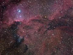 ARA DRAGONS (maicongerminiani) Tags: astrophotography astronomy apod astrobin zwo zwoasi astrometrydotnet:id=nova3668649 astrometrydotnet:status=solved