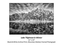 "Lake Tilghman in Winter • <a style=""font-size:0.8em;"" href=""http://www.flickr.com/photos/124378531@N04/48880608477/"" target=""_blank"">View on Flickr</a>"