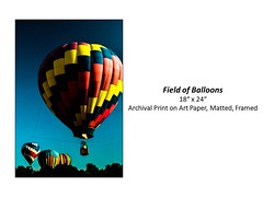 """Field of Balloons • <a style=""""font-size:0.8em;"""" href=""""http://www.flickr.com/photos/124378531@N04/48880608537/"""" target=""""_blank"""">View on Flickr</a>"""