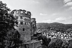 Heidelberg Castle (Francis Mansell) Tags: castle ruin heidelberg germany building architecture monochrome blackwhite niksilverefexpro2 tower