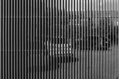 Parkeerterrein (Pieter Musterd) Tags: parking parkeerplaats auto car hek fence pietermusterd musterd canon pmusterdziggonl nederland holland nl canon5dmarkii canon5d