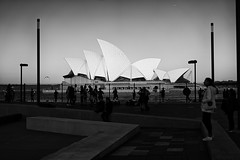 Salsa Under the Sails (Leighton Wallis) Tags: sony alpha a7r mirrorless ilce7r 55mm f18 emount sydney newsouthwales nsw australia circularquay sydneyoperahouse ferry busker tourists