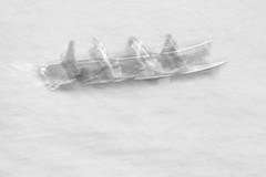 Currach Race VI (annemcgr) Tags: currach race rowing competition dingle kerry ireland icm intentionalcameramovement minimalism blur motionblur monochrome