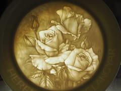 porcelain plate (Elisabeth patchwork) Tags: smileonsaturday whiteinbacklight porcelain plate rose relief porzellan