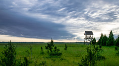 Latvian Landscape (alex.prostjakov) Tags: landscape latvia trees clouds green