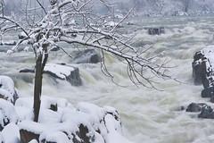Great Falls in snow (Shedugengan) Tags: great falls virginia va snow winter storm