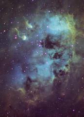 Tadpoles Nebula (AstroBackyard) Tags: astrophotography tadpoles nebula ic 410 ccd camera color astronomy telescope hubble palette sho