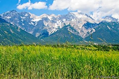Tyrolean Alps Panorama (elzbietafazel) Tags: tyrol tirol alpine austria miemingerplateau rural countryside field grain tranquilscene scenic panorama alps mountains landscape peaks mountainrange woodedslopes snowypeaks
