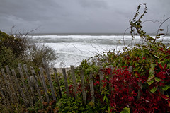 Rough Surf Below the Cliff (brucetopher) Tags: fence fenced fencedfriday sea shore coast storm weather wave waves violent crashing stormy gale noreaster noreastah wind windy rough surf break breakers breaking beach view water ocean cloud overcast