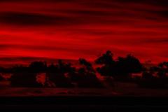 Red Sky (Markus Branse) Tags: sunset sun port sonnenuntergang dusk australia darwin sonne northernterritory redskyoverportdarwinaftersunset red orange rot weather see twilight meer himmel australien rood wetter australie weer abendrot austral ocean park sea evening abend wasser wolken northern bicentennial territory idylle untergang ozean nordaustralien nordterritorium outdoor feld wolke dämmerung sonnenuntergänge heiter
