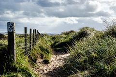 Left Or Straight Ahead?! (BGDL) Tags: lightroomcc nikond7000 bgdl landscape nikkor18105mm3556g prestwick decisionsdecisions gatesandfences week41 weeklytheme flickrlounge