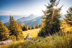 Late Summer (Toukensmash) Tags: summer late nature austria österreich rural meadow field tree woods alps alp high autumn start fall pentax k1 rokinon lightroom hdr wide sun angle sunset sunstar aperture