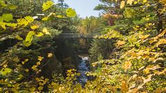 Automne, autumn - Parc des Sept-Chutes, Beauce, PQ, Canada - 4749 (rivai56) Tags: automne autumn parcdesseptchutes beauce pq canada 4749 parc park sigma 1020 rivière river passerelle bridge