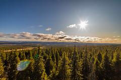 Syöte National Park (Arttu Uusitalo) Tags: ahmavaara landscape sunny day blue sky clouds wideangle woods forest syöte national park north ostrobothnia pudasjärvi finland scenic scenery canon eos 5d mkiv