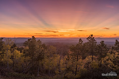 Volcanic Rays (kevin-palmer) Tags: blackhills blackhillsnationalforest wyoming cementridge fall autumn october evening nikond750 sunset color colorful foliage clouds pink orange crepuscular rays dusk hdr sky trees tamron2470mmf28 purple