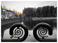 Den Haag (Hofvijver) on October 11th 2019 (National Coming Out Day) (Rudike) Tags: rainbowflag holland regenboogvlag nationalcomingoutday hofvijver thehague 'sgravenhage denhaag