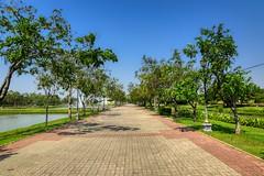 Wide footpath in Suan Luang Rama IX park in Bangkok, Thailand (UweBKK (α 77 on )) Tags: suanluang suan luang rama 9 ix park garden recreation outdoors flora nature plant tree bush green sky blue lake bangkok thailand southeast asia sony alpha 77 slt dslr wide footpath path