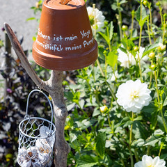 Gardening is my Yoga (Bephep2010) Tags: 2019 7markiii alpha bern blumentopf gummistiefel gärtnern ilce7m3 oberried oberriedambrienzersee pumps sel24105g schweiz sommer sony switzerland yoga flowerpot gardening gumboot summer ⍺7iii kantonbern