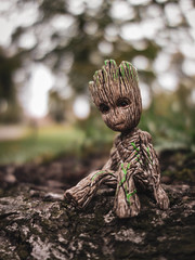 Groot (Patryk Rejdych) Tags: polska poland outside nature park forest bokeh sony sonyrx100 groot marvel avengers guardiansofgalaxy cinematic