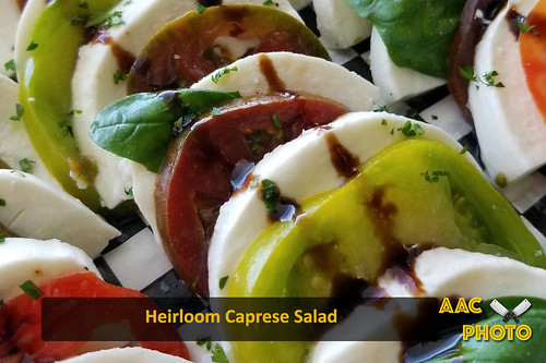 "Caprese Salad • <a style=""font-size:0.8em;"" href=""http://www.flickr.com/photos/159796538@N03/48882545266/"" target=""_blank"">View on Flickr</a>"