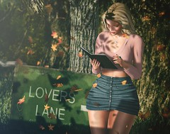 N583 Lovers Lane (Tiffany's Blended Beauty Blog) Tags: cae chicmoda diversion elise fameshed glamaffair lelutka maitreya posefair stealthic