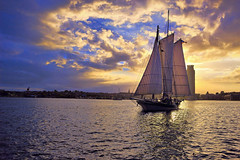 Evening Reach (Tim Pohlhaus) Tags: light sky seascape water harbor ship baltimore cbf gcbsr fellspoint chesapeakebay ladymaryland pungyschooner