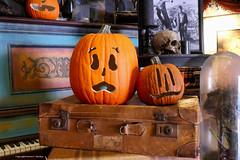 punkin heads (Little Hand Images) Tags: pumpkins carvedpumpkins suitcases piano skull universalstudiosflorida halloweenhorrornights29 orlando leica