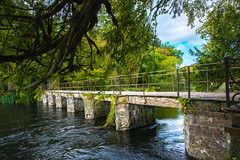 Abbey bridge at Cong village Mayo Ireland (anastasiabyrne) Tags: bridge cong abbey village mayo ireland nature autumn forest river trees
