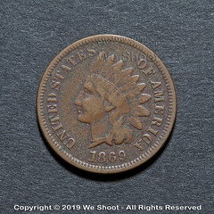 1869 Indian-Head Penny (weeviltwin) Tags: indian head penny pennies 1869 wheat coin coins coinage mint minted us currency money monies copper old reddish brown collector collectible weshootcom