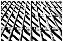 Cattlegrid in the afternoon sun (leo.roos) Tags: lijn patro arty 35 voigt repe abstra contrast compo solaag cosina a7 cv mmount darosa voigtlander3514 nokton3514 leoroos voigtlandernoktonclassicsc35mmf14vm noiretblanc dune zeeland cattlegrid duin walcheren demanteling wildrooster
