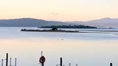 800_4331 (Lox Pix) Tags: mallacoota victoria australia scenery sunset loxpix l0xpix loxwerx landscape kangaroo caravanpark lighthouse waves birds ocean reflections clouds loxpixmallacoota