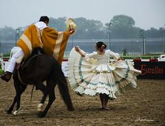 La Marinera (Adrit fotografías) Tags: transáresencia2019 lamarinera bailarines caballo horse argentina cultura culturaperuana hipódromodepalermociudaddebuenosaires baile baileperuano caballos dander photography photos