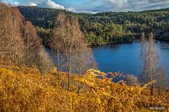 "Bracken, Birch and Freshwater Islands at Loch Beinn à Mheadhoin, Glen Affric, in Autumn. (Scotland by NJC.) Tags: lakes lochs reservoirs waters meres tarns ponds pool lagoon lago 湖 see λίμνη 호수 innsjø jezioro lac озеро sunset nightfall dusk sundown gloaming twilight غُرُوبُ الشَّمْس ""pôr do sol"" sonnenuntergang ηλιοβασίλεμα tramonto ""zachód słońca"" apus ""закат солнца"" solnedgång forest woodland plantation wald δάσοσ foresta skog las pădure island isle islet archipelago atoll key جَزِيرَةٌ insel νησί isola wyspa insulă остров lochbeinnamheadhoin glenaffric northwesthighlands scotland"