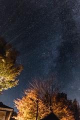 Milky way (lesaintsylvain) Tags: milky way galaxy stars night moon saturn planet planets lake long exposure forest trees exterior