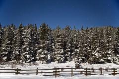 Big Dipper over the Trees (John Andersen (JPAndersen images)) Tags: kananaskis nightsky moonlight calgaryalberta fence