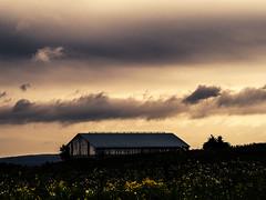 jeu de nuages (photosgabrielle) Tags: wotton photosgabrielle nature nuages ciel grange barn sky clouds