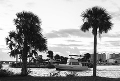 Happiness (in Explore) (mimsjodi) Tags: trees sky boat marina titusvillemarina titusvillefl happiness bw blackandwhite saturdayselfchallenge challenge groupchallenge clouds explored
