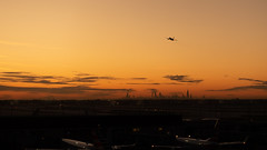 O'Hare Sunrise (RW Sinclair) Tags: 2019 autumn carl chicago dscrx100m3 digital fall m3 october rx100 rx100m3 rx100iii sony variosonnar zeiss iii airplane airline plane jet aviation airport sunrise orange skyline skyscraper cityscape clouds