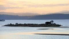 800_4368 (Lox Pix) Tags: mallacoota victoria australia scenery sunset loxpix l0xpix loxwerx landscape kangaroo caravanpark lighthouse waves birds ocean reflections clouds loxpixmallacoota