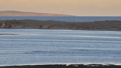 800_4359 (Lox Pix) Tags: mallacoota victoria australia scenery sunset loxpix l0xpix loxwerx landscape kangaroo caravanpark lighthouse waves birds ocean reflections clouds loxpixmallacoota