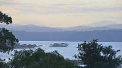 800_4322 (Lox Pix) Tags: mallacoota victoria australia scenery sunset loxpix l0xpix loxwerx landscape kangaroo caravanpark lighthouse waves birds ocean reflections clouds loxpixmallacoota