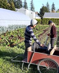 IMG_20191010_214451_583 (CSFS at UBC Farm) Tags: irrigation