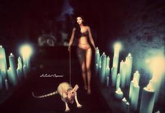 Darkness.... (SoliCaproni) Tags: maitreya • ebano poses have unequal fameshed unik