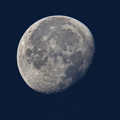 Landing on the Moon (Robyn Hooz) Tags: luna moon satellite smallstepforaman mari sea crateri sigh sky cielo night padova