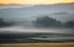 fog robes (Woewwesch) Tags: autumn fall sunrise fog mist outside colors trees meadow hills eifel