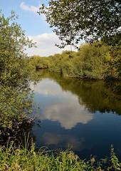 36343 (benbobjr) Tags: kingsburywaterpark acountryparkinnorthwarwickshireitislocatednorthofbirminghamandlyingontherivertameitisownedandmanagedbywarwickshirecountycouncilitisrenownedforitsbirdlife 000visitorsinitsfirstyear anumberwhichhadexpandedto350 000in2007 warwickshire northwarwickshire birmingham westmidlands midlands england english uk unitedkingdom gb greatbritain britain birminghamuk kingsbury bodymoorheath birminghamandfazeleycanal rivertame edwinsscarpepool pool lake mere naturereserve park wildlifehabitat warwickshirecountycouncil midlandgravelcompany countrypark