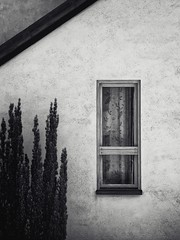 A Window and Yew (500px refugee) Tags: monochrome achromatic texture yew window wall roof curtain dialog frame view dialogue structure fabric touch context tactile rough composition form being essence mood shape balance surface coherence feeling ambiance aura atmosphere atmospheric whim impression personality estate setting environment space emotion rest quiet cold tomb facade crypt shrine coffin grave interment sepulchure disguise pretense veneer deception posture story false skin silent soundless mute locked private sealed hidden secluded esoteric isolated retired lonely veiled obscured unseen solitary