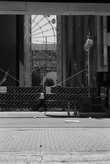 September 2019_41 (Satoshi Kondo) Tags: blackandwhitephoto